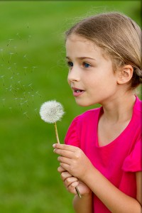 Summer joy - lovely girl blowing dandelion, happy child concept.